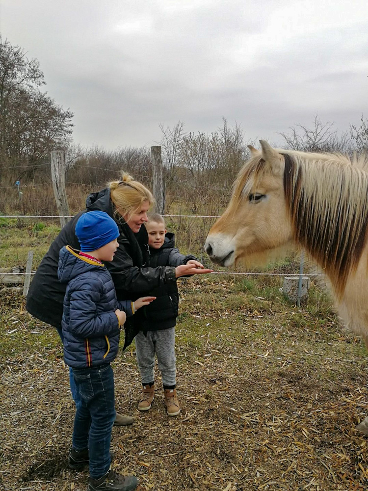 Foto: zwei Kinder und eine Frau füttern ein Pferd
